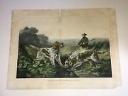 Original Currier And Ives Print American Field Sports - Retrieving Dogs Hunting