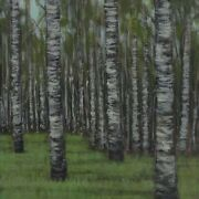 Huge Painting Spring Summer Forest Birch Tree Woods Nature Modern Home Decor 4ft