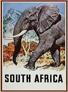 95331 South Africa African Elephant Travel Decor Laminated Poster Us