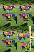 Colorful Seashells Windchimes 23 Each Tropical Punch 4 Of G-48