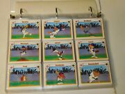 Lot Of 247 - Upper Deck Looney Tunes All Stars Trading Cards Double Side