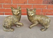Pair Of Life-size Cast Brass Kittens Cats With Incredible Details