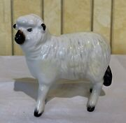 Beswick Sheep Model No. 935 White And Black Gloss Perfect Old A
