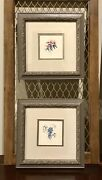 Sandy Lynam Clough Floral/botanical Framed Print/artwork Set