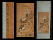 Chinese Antique Collection Hanging Scroll On Silk With Seal Marks