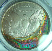 1885-o Rainbow Toned Morgan Dollarpcgs Ms64 Colorful Reverse Crescent Toning