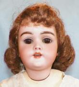 Heinrich Handwerck Bisque Doll Composition Body 20in. New Wig Antique A Beauty
