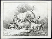 Antique Print-dogs-playing-vernis Mou-george Morland-1790