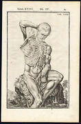 2 Antique Anatomical Prints-man-naked-muscle-chest-spigelius-casserius-1645