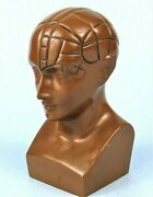 Paxipam Vintage Phrenology Bust Medical Advertising Paperweight High Anxiety