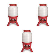 Little Giant 60 Pound Feed Heavy Duty Poultry Chicken Gravity Feeder 3 Pack