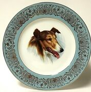 Vintage W.h. Grindley Staffordshire Ironstone Rough Collie Collectible Plate