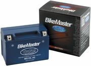 Bikemaster Mg51913 Trugel Gel Cell Sealed Bmw Motorcycle Battery Replaces 51913