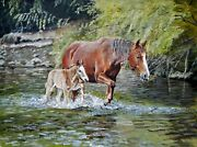 William John Jr Horse And Mare Crossing Salt River18x24 Acrylic Painting