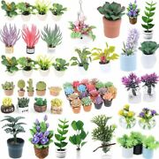 Simulations Mini Potted Plants For Doll Houses Furniture Decors Plastic Material