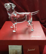 Nib New Flawless Exquisite Baccarat France Crystal Chien Labrador Dog Figurine