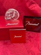 Mib Flawless Exquisite Baccarat France Crystal Nautilus Sea Shell Snail Figurine