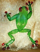 22x18 Frog Stained Glass Suncatcher Crafted By East Lansing Craig Mitchell Smith