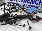 Evinrude Etec 115 Hp, Complete Engine Harness, Part 586891, Used