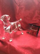 Flawless Exquisite Baccarat France Art Glass Crystal Chien Labrador Dog Figurine