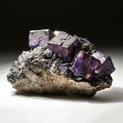 Purple Fluorite From Elmwood Mine Carthage Smith County Tennessee