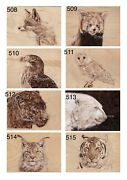 Pyrography Wood Burning Art Collection -animal Wildlife Limited Edition A4 Print