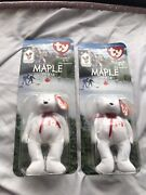 Mcdonald's Ty Maple The Bear Beanie Baby Pair With Tag Errors