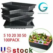 Plant Growing Trays Perfect Garden Seed Starter For Seedlings Soil 10x 20.75andrdquo