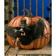 """Bethany Lowe Cawing Pumpkin 12"""" Td8521 Crow Free Shipping"""