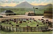 Western Ranch And Cattle Corral Cows Agriculture Beef Ranching 1958 Postcard D61