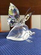 Crystal Figurine Sparkling Butterfly 111359 Mint