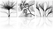 Visual Art Flowers Painting Canvas Prints Wall Decor Black And White Framed And
