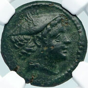 Carthage Rare Ancient First Punic War 217bc Greek Coin Tanit Horse Ngc I88378