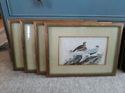 Set Of Four Antique Chinese Export Bird Paintings