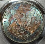1887 Morgan Ms65 Pcgs Rattler Clean Cheeks Most Amazing Monster Toned Reverse