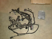 1994-1995 Ford Mustang 5.0l Engine Wiring Harness Gt40 Cobra 302 With Computer