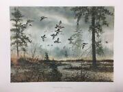 David Hagerbaumer Middle Fork Wigeon Teal Sprig Duck Pintail Remarque Art Print