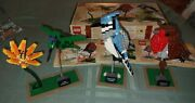 Lego Ideas Birds 21301 - Complete W/open Box And Instructions