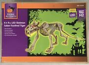 Home Accents 34 Animated Skeleton Sabertooth Tiger W Led Eyes Halloween Yard