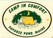 Vintage Papoose Pond Maine Camp Meyercord Souvenir Travel Decal Camping 1966 Art