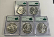 5 1904-o Pcgs Ms64 Cac Ogh Set Morgan Silver Sequential Serial Andrsquos Rattler Slabs