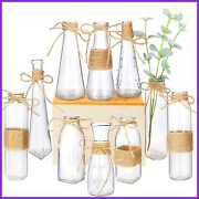 Glass Vases Set Of 10 Clear Flower Vase W Rope Design And Differing Unique Shapes