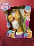 Furreal Friends Daisy Plays-with-me Kitty Toy Interactive Pet
