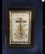 Antique Pressed Flowers Of Jerusalem Flowers From The Holy Land