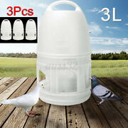 3l White Plastic Drinker Pigeons Birds Accessories Feed Suppliers W/ Handle
