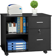 Greenforest 2 Drawers File Cabinet Wooden Lateral File Cabinet With Open Storage