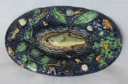 French Majolica Palissy Tours Dish Shells Fish Snail Butterfly