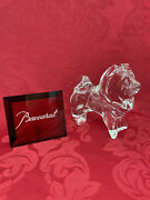 Flawless Stunning Baccarat France Art Glass Chow Crystal Dog Puppy Figurine