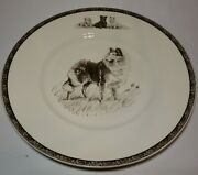 Vtg Wedgwood Non-sporting Dog Plates Collie Highland Chief Marguerite Kirmse