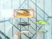 Lot Of 5 Bomber Smilin Minnow Old Texas Baits Odd Colors, Lightly Fished,1 Large